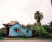 PANAMA, Bocas del Toro, a vibrantly colored run down home in town, Central America