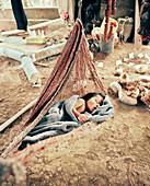 PANAMA, Bocas del Toro, Salt Creek Islands, a Guaymi Indian baby sleeps in a hammock, Central America