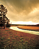 USA, Wyoming, Nez Pearce Creek landscape at dusk, Yellowstone National Park