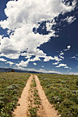 USA, Wyoming, Encampment, a dirt road winds through a vast Wyoming landscape