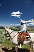 USA, Wyoming, Encampment, a cowboy sits on his horse and looks to the horizon, Abara Ranch