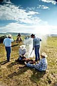 USA, Wyoming, Encampment, cowboys brand cattle at Big Creek Ranch