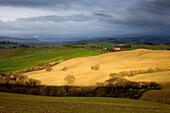 Toskanische Hügellandschaft des Val d'Orcia im Frühling mit Sonne im Vordergrund und Regenwolken im Hintergrund, San Quirico d'Orcia, Toskana, Italien