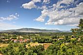 Weinanbau bei Medugorje südl. von Mostar, Bosnien und Herzegowina