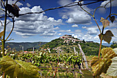 Mountain village of Motovun, Central Istria, Croatia