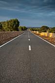 Country road near Manacor, Majorca, Spain