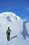 Female backcountry skier ascending on ridge to Grosser Traithen, Wendelstein in background, Mangfall range, Bavarian Alps, Upper Bavaria, Bavaria, Germany