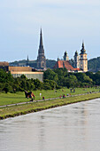 The flood zone of the Danube is normally a green park. Steeples of the new cathedral, Mary-Immaculate-Conception and parish church in the background, Linz, Upper Austria, Austria