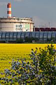 OMV Schwechat, Raffinery and rape field, Schwechat, Lower Austria, Austria