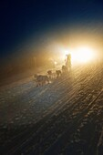 Pirena Advance is a 15 days long sleddog race across the Pyrenees  Spain-France-Andorra Scoring for the world sleddog championship, it is one of the reference races in Europe  It has been held between January and February for 22 years  Pirena  Sled  Dog