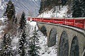 Switzerland, The Graubunden canton, the glacier express train, mountain rack train from Saint-Moritz to Zermatt