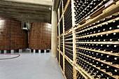 Bottle rack, Wine cellar, Aging wine storage in barrels, Olarra winery, Rioja, Logroño, Spain