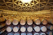 Wine cellar, Aging wine storage in barrels, Olarra winery, Rioja, Logroño, Spain