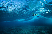Underwater view of surfer in waves