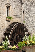 France, Normandy Region, Calvados Department, Bayeux, old water wheel