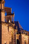 France, Centre Region, Eure et Loir Department, Chartres, Chartres Cathedral, exterior detail, dawn