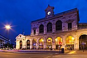 France, Nord-Pas de Calais Region, Nord Department, French Flanders Area, Lille, Gare Lille-Flandres train station, dusk