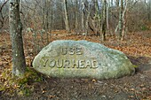 USA, Massachusetts, Gloucester, Dogtown rocks with inspirational words, Use Your Head