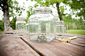 Jars with Insects on Outdoor Table