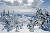 View of First Pump Peak from Mount Seymour, Mount Seymour Provincial Park, Vancouver, British Columbia