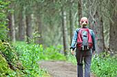 Woman hiker on Lake Louise Trail. Banff National Park, Alberta, Canada.