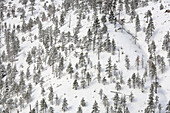 Winter scenic of mountain ridges above Thompson river, near Spences Bridge, British Columbia