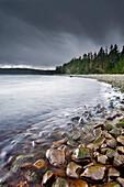 Rubbing Rocks, Malcolm Island, BC, Canada