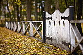 Autumn leaves and gate of The English Gardens, Assiniboine Park, Manitoba