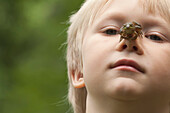 Little boy with frog on his nose, Ontario, Canada