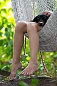 Girls Legs and Dog in Hammock