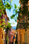 France, Lanquedoc Roussillon, Collioure, street