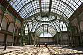 'France, Paris, 8th arrt, Grand Palais des Champs-Elysées, glass vault and structure made of iron and light steel framing, Gad Weil Nature Capital group project: ''Free will Theorem'', labyrinth made with moss'