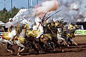 Morocco, Fantasia, Near Rabat, Men On Horseback With Rifles