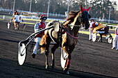 France. Paris. Vincennes. Hippodrome de Vincennes. Horse trotting to heat. Horse: Prince du Verger. Jockey: E. Raffin.
