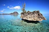 Indian ocean, Mauritius, Île aux Benitiers