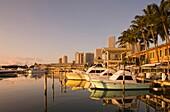 BAYSIDE MARKETPLACE MARINA DOWNTOWN SKYLINE MIAMI FLORIDA USA
