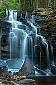 DUTCHMAN WATERFALLS LOYALSOCK CREEK, LOYALSOCK STATE FOREST SULLIVAN COUNTY PENNSYLVANIA USA