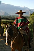 HUASO WEARING CHUPALLA HAT DON MAXIMIANO ESTATE VINA ERRAZURIZ WINERY ACONCAGUA VALLEY CHILE