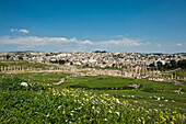 The Ancient City Of Jerash, The Decapolis City, Jordan, Middle East