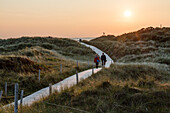 Path through the dunes at sunset, Spiekeroog Island, National Park, North Sea, East Frisian Islands, East Frisia, Lower Saxony, Germany, Europe