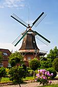 Peldemuehle windmill in Esens, Lower Saxony, Germany, Europe
