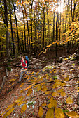 Young woman with backpack hiking through beech forest in autumn, Triglav National Park, Slovenia