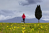 Young womna jogging along a blooming flower meadow, Monte Amiata in background, Tuscany, Italy