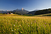 Farm in front of Watzmann and Hochkalter, Berchtesgaden region, Berchtesgaden National Park, Upper Bavaria, Germany