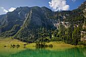 Near Salet at the southern part of Koenigssee, Berchtesgaden region, Berchtesgaden National Park, Upper Bavaria, Germany