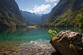 Obersee, Koenigssee, Berchtesgaden region, Berchtesgaden National Park, Upper Bavaria, Germany