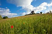 Windmill near Pudagla, Usedom island, Baltic Sea, Mecklenburg Western-Pomerania, Germany