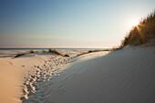 Dunes at Kniepsand, Amrum island, North Sea, North Friesland, Schleswig-Holstein, Germany