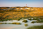 Lighthouse in the dunes at Kniepsand, Amrum island, North Sea, North Friesland, Schleswig-Holstein, Germany