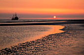 Fishing cutter at sunset at Kniepsand, Amrum island, North Sea, North Friesland, Schleswig-Holstein, Germany